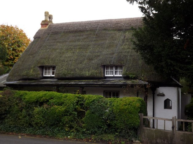 "A thatched house we walked past often in the two weeks that we stayed in Amesbury with Ray's son, daughter-in-law and grand-daughter. A very pleasant stay indeed :-"")"