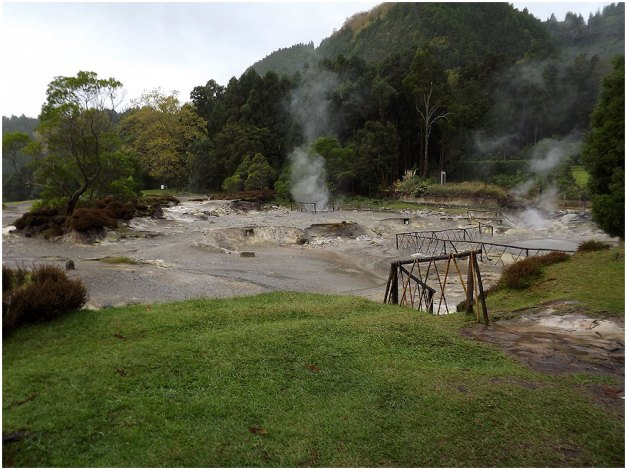 Several fumaroles and mud pools are located at the northern part of Lagoa das Furnas. People cook what is called cozido, a dish consisting of pork, beef, lamb, chicken, sweet potato, carrots and yam. All ingredients are put in a pot which in then put in a canvas bag, lowered into the fumarole, which is then covered. The food is left in there for four to six hours; unfortunately we didn't get to taste this dish but Ray guarantees  me it is YUM!